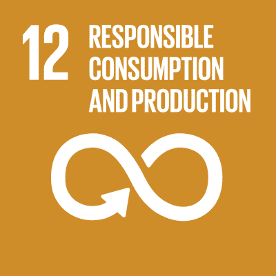 12. Responsible Consumption & Production